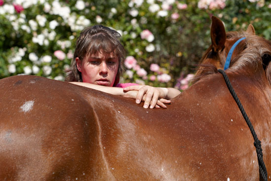 Anna-Steijling-dierfysiotherapeut-paard